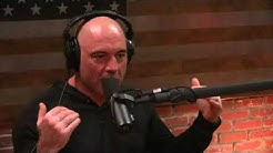 Joe Rogan And The Pathway To Success