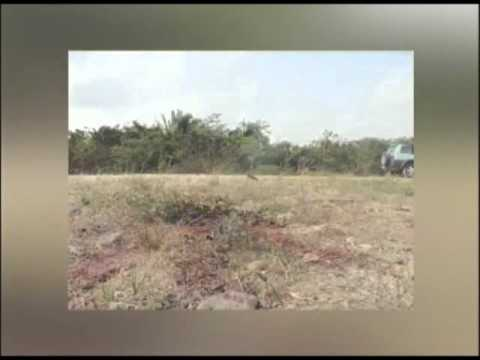 Another murder reported in the Cayo District