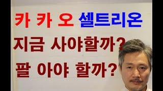 시장주도주(카카오,NAVER,엔씨소프트,셀트리온,삼성바…