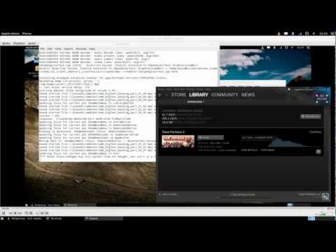 Steam Linux native client running