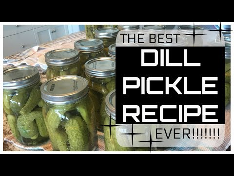 Best Dill Pickle Recipe!!! Plus, Canning Tips & Tricks!