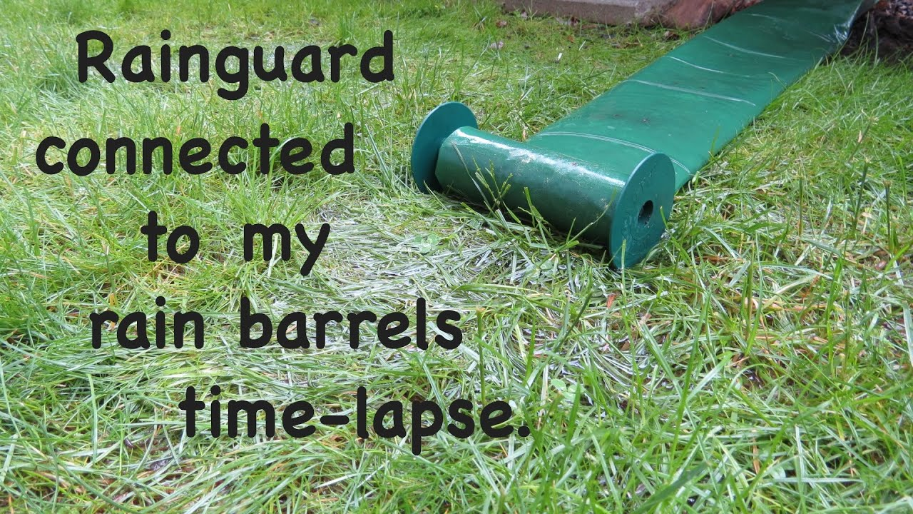 Rainguard Downspout Extension On My Rain Barrels Time
