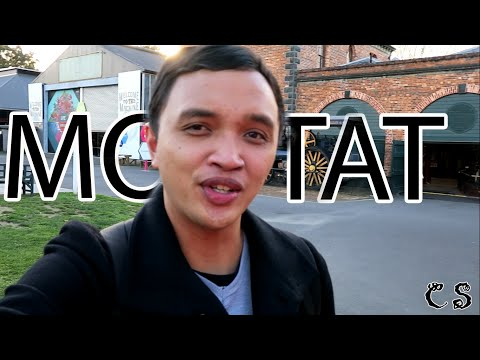 CS visits - MOTAT Auckland
