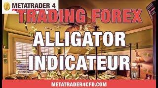 Metatrader 4 Trading Plateforme : Indicateur Alligator