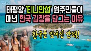 태평양 티니안 섬에 원주민들이 매년 김장 담그며 한국문…