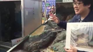 土石流模型装置を使った治山ダムの実験 但馬まるごと感動市2018