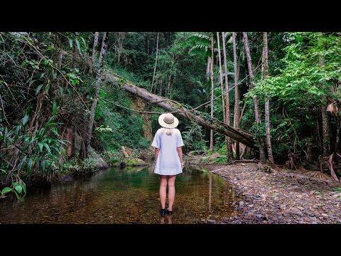 SUNSHINE COAST HINTERLAND | AUSTRALIA