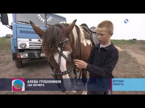 видео: Секрет фермы. Как бывший водитель курского колхоза стал успешным фермером