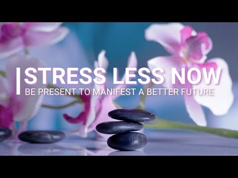 LESS STRESS NOW - Be Present To Manifest A Better Future - TRACI HARDING