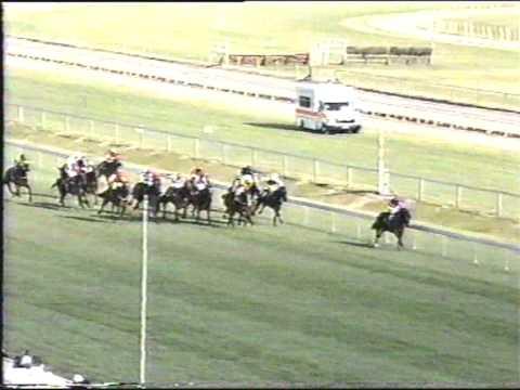 1999 Mudgway StakesHero