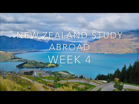 New Zealand Study Abroad : Week 4
