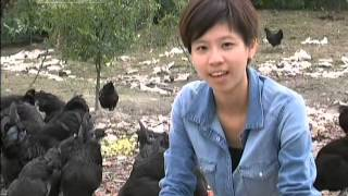 China's college graduates choosing farm life over city