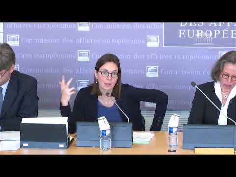 Ma question à la Ministre des Affaires Européennes, en Commission des Affaires Européennes