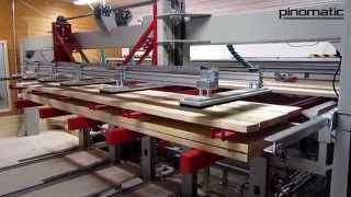Pinomatic Infeed For Band Saw Line