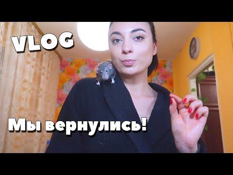 КАК МЫ? ПОСЕДЕЛА ИЗ-ЗА ТЕСТА! ПЕРВЫЙ РАЗ ГОТОВЛЮ ....(Семейный влог, Украина, Киев 2020)
