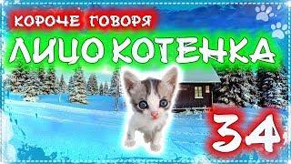 КОРОЧЕ ГОВОРЯ, ЛИЦО КОТЕНКА 34 [От первого лица] Бездомный котенок Лайки супер герой