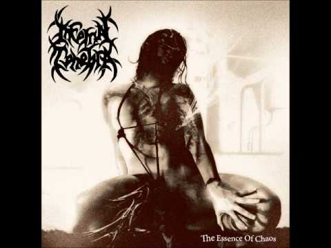 Infernal Tenebra   The Bitter Taste Of Experience