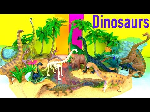 Learn  Dinosaurs - Brachiosaurus Life Cycle - Learn about Sauropods