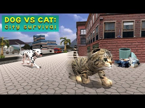 Dog VS Cat City Survival