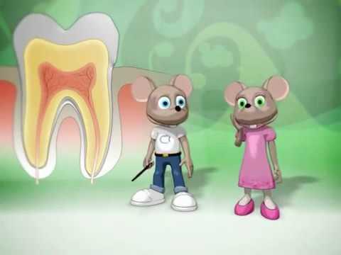 La vita dei denti un cartone animato per tutti parte1 youtube
