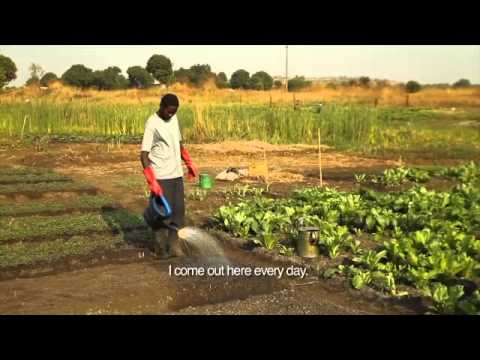 Tshala Community Garden, Tshala, Democratic Republic of the Congo, a KCC social project