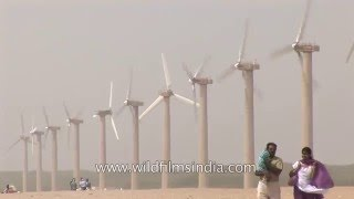Wind turbines in Gujarat - India