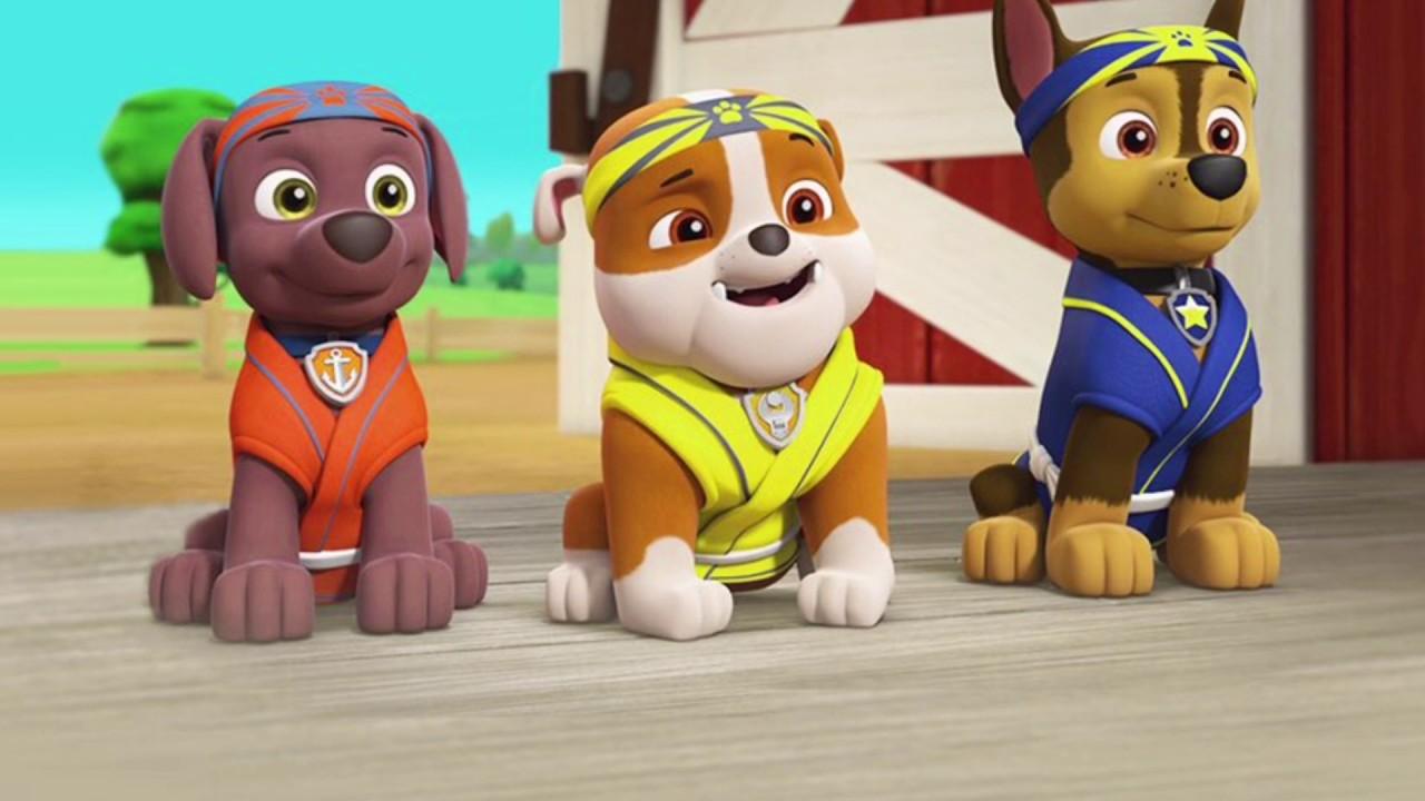 картинки щенячий патруль зума и скай они прекрасно сочетаются
