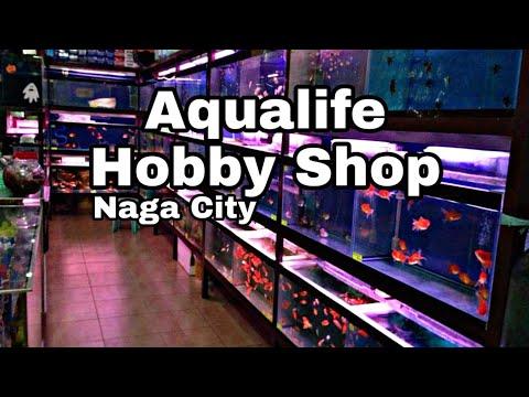 Aqualife Hobby Shop