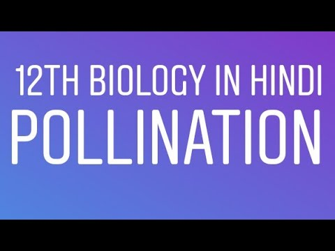 #7 12th class NCERT Biology line to line in Hindi Chapter 2 sexual production in flowering plants thumbnail