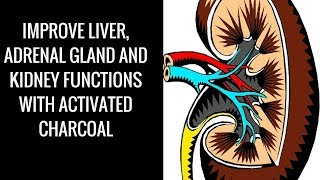 Video Improve liver, adrenal gland and kidney functions with activated Charcoal download MP3, 3GP, MP4, WEBM, AVI, FLV Agustus 2018