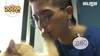 집사돌 [WINNER x 동물농장] 하이라이트 (feat.개흥분)