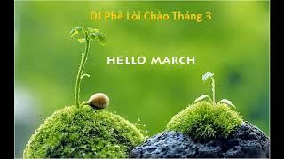 DJ Tháng 3 Phê Pha Không Lối Thoát