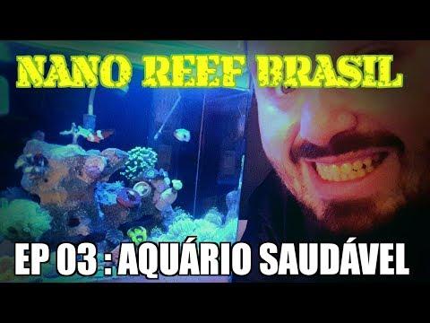 Nano ReeF Brasil - Ep 03 - Aquário Marinho Saudável