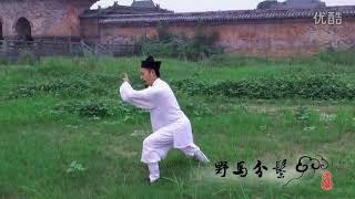 Wudang Tai Chi Quan 28