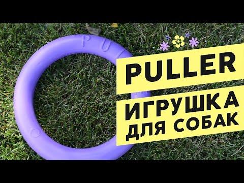 Puller/Пуллер для собак