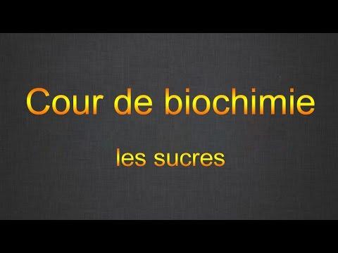 Cour de biochimie : les glucides (part1)
