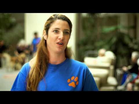 Kisfilmek nagy csodákról: Tappancs Állatvédő Alapítvány