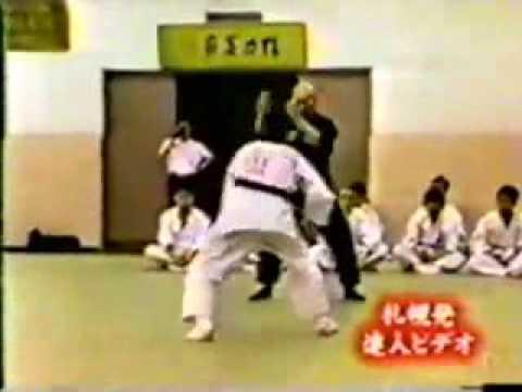 fake kung fu=asskicking