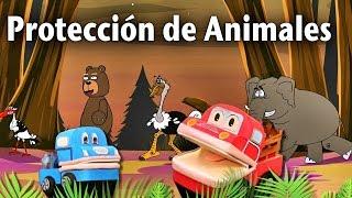 Protección de Animales en Peligro de Extinción - Los Niños Aprenden a Preservar - Barney El Camión