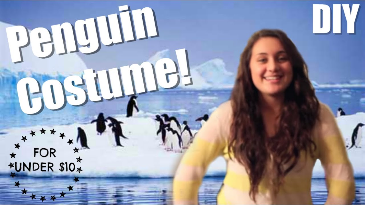 How To Make A Penguin Costume