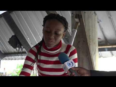 L'ART PLASTIQUE AU CONGO