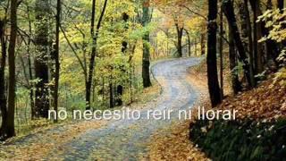 Black Wonderful Life 1987 Subtitulado En Español