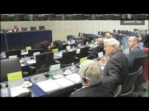 Bruno Gollnisch's speech in front of the Constitutional Affairs Committee