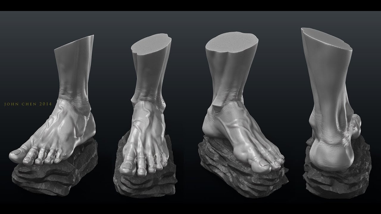 Anatomy Study - Male Feet - YouTube