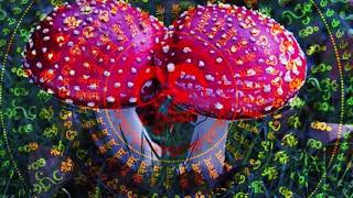 Progressive Psytrance mix January 2020 Mushroom edition