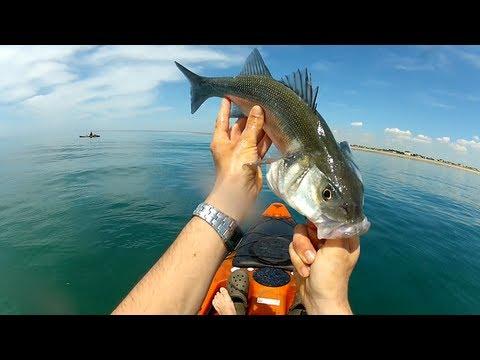 Pêche du Bar en Kayak Mai 2013 aux leurres Normandie HD 1080P