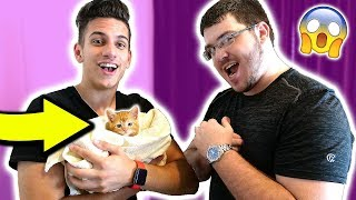 taking unspeakablegaming s cat minecraft real life troll