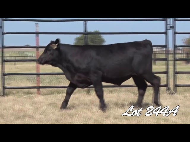 Pollard Farms Lot 244A