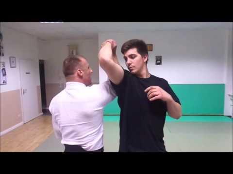 Aikijutsu/ Aikido : Shiho Nage
