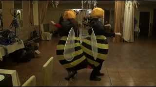 Пчелки клип тел.89533603399